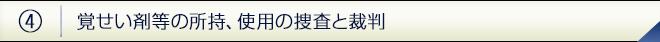 kakusei04