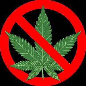 cannabis-1254745_1280